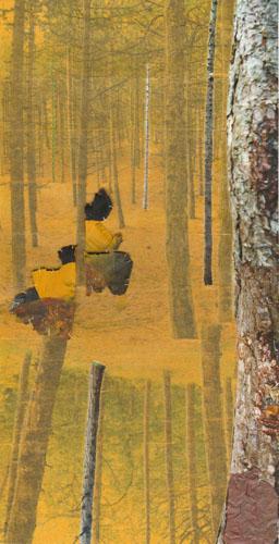 'Aftakking' 2011 - verfresten en tape op fotocollage