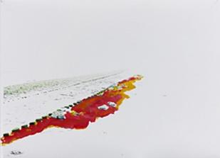 'Branding' 2013 - acryl op foto, 580 x 820 cm