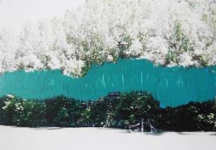 'Het schild' 2013 - acryl op foto, 9 x 12 cm