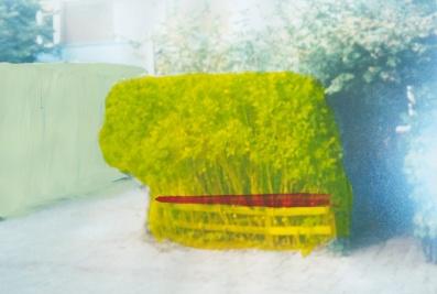 'Scheen' 2013 - acryl op beschilderde print