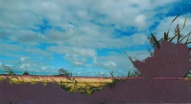 'Snaar' 2013 - acryl en draad op foto