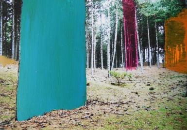 'Tendens' 2013 - acryl op foto, 9 x 12,5 cm