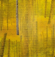 'Uitsparing' 2011 - tape op collage